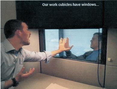 cubicles have windows web
